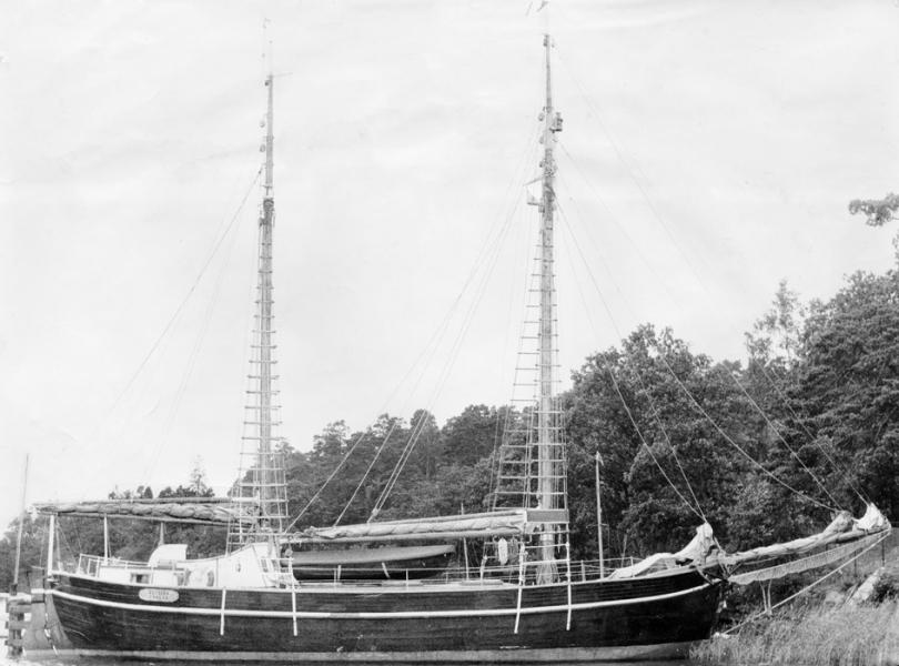 Wetsera_1927-1959